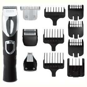 Wahl lithium ion all in one