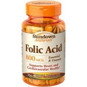Sundown Naturals Folic Acid 800 mcg, 100 Tablets