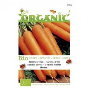 Buzzy - Organic Summer Carrots Seeds - 777