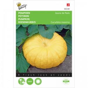Buzzy - Pumpkin Yellow Paris - 777