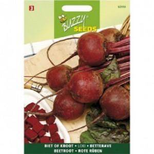 Buzzy - Seeds Beetroot 5 - Loki - 777