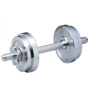 Pro Sports - Chrome Dumbbell Plate Set 10 kg (Pair)