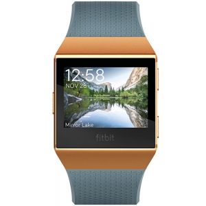 Fitbit Ionic Wristband With Heart Rate - Slate Blue/Burnt Orange - One Size (S & L Bands Included)