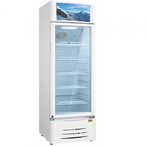 Midea Commercial Refrigerator - White - 411 Liters - HS-411S