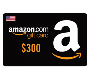 Amazon $300 Digital Gift Card (US)