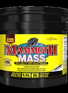 Mammoth Mass  Weight Gainer 5 kg